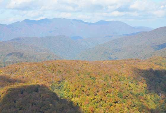 秋の白神山地・二ツ森軽登山