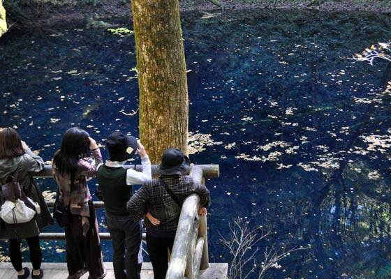世界遺産白神山地の美水を巡る秋のトレッキングツアー3日間
