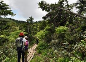 森吉山の登山道