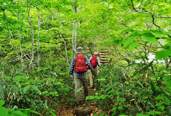 白神山地の二ツ森日帰りツアー
