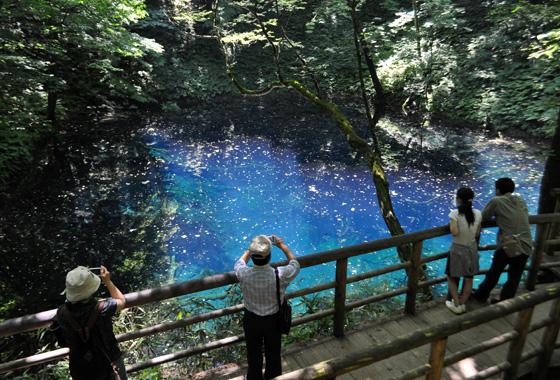 白神山地の十二湖にある青池